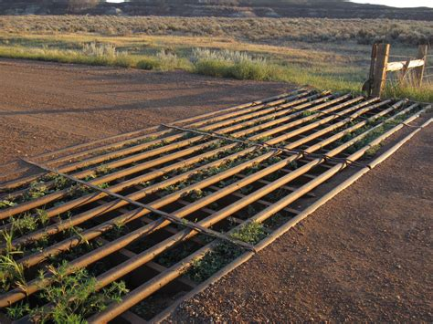 Cattle Guard Plans Obama Birth