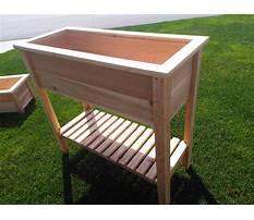 Best Cedar planter boxes toronto
