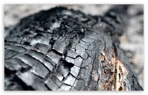 Charred Wood Definition