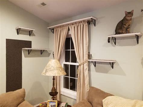 Cheap-Diy-Cat-Shelves
