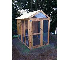 Best Cheap diy chicken coop plans free