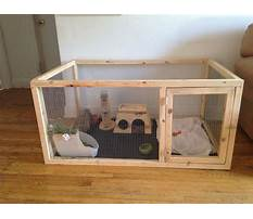 Best Cheap indoor rabbit hutch diy