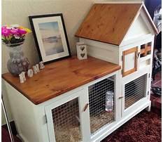 Best Cheap indoor rabbit hutch diy door