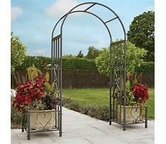 Best Cheapest garden arches