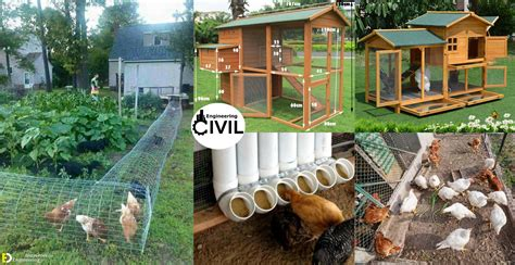 Chicken Coop Designs For 50 Chickens