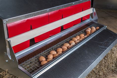 Chicken Roll Out Nest Boxes