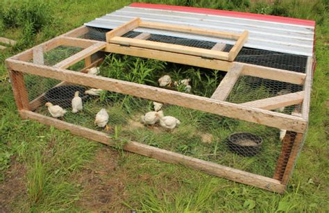Chicken Tractor Plans For Meat Chickens
