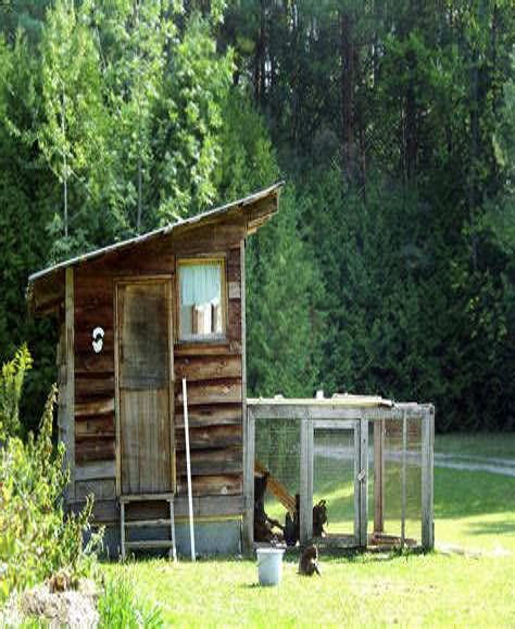 Chicken-Coop-Plans-Backyard-Chickens