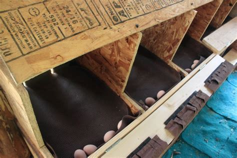 Chicken-Roll-Out-Nest-Box-Plans