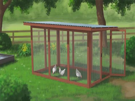 Chicken-Run-Design-Plans
