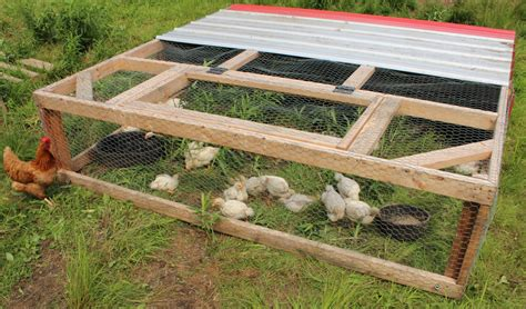 Chicken-Tractor-Plans-For-Meat-Birds
