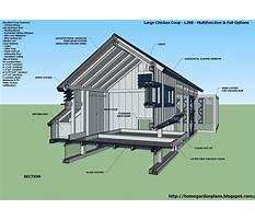 Best Chicken coop layouts.aspx