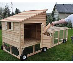 Best Chicken coops on wheels for sale uk
