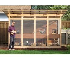 Best Chicken enclosure plans