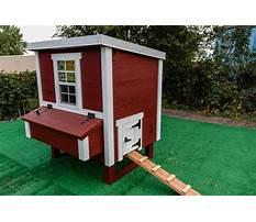 Best Chicken houses