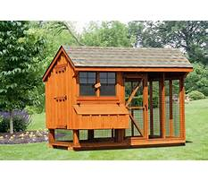Best Chicken houses design quotes