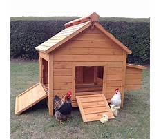 Best Chicken houses for sale
