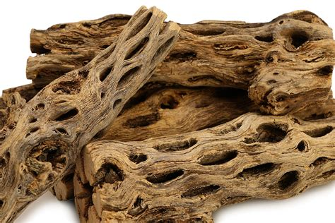 Cholla-Woodworking