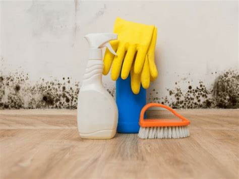 Cleaning-Mold-Off-Woodwork