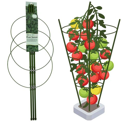 Collapsible Plant Cage