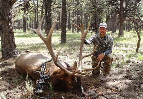 Colorado Diy Cabin Elk Hunts