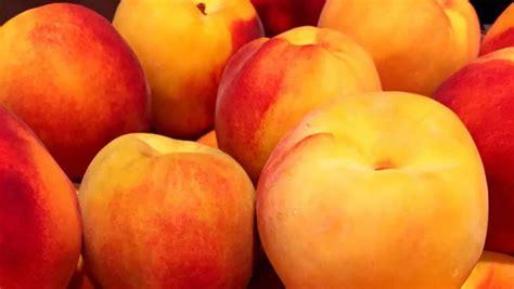 Colorado Famous Palisade Peaches