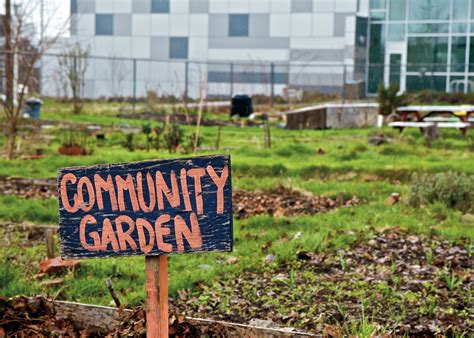 Community Garden Projects