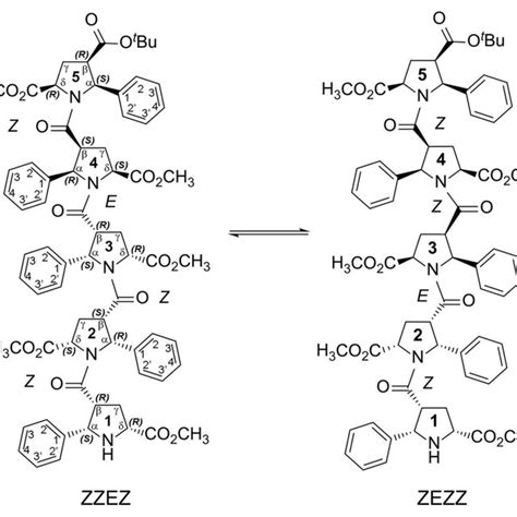 [pdf] Conformational Mobility Of The Pyrrolidine Ring Of Proline .