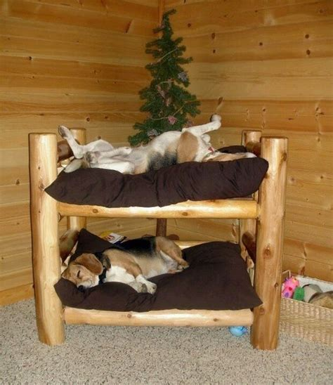 Cool Dog Bed Diy Loft