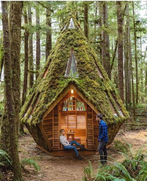 Cool Tiny House In The Woods Plans