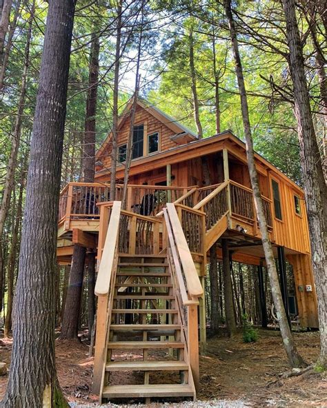 Cool-Tree-House-Plans