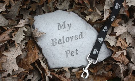 @ Coping With Losing A Pet - Helpguide Org.