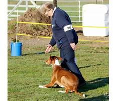 Best Countywide dog training santa rosa ca.aspx