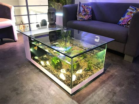 DIY Aquarium Center Table