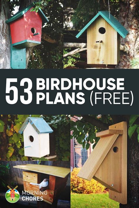 DIY Bird Houses Plans