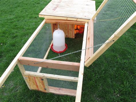DIY Broody Hen Box