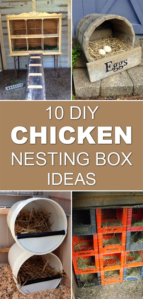 DIY Chicken Nesting Box Ideas