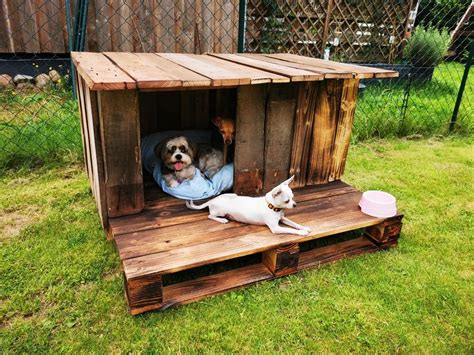 DIY Dog House Plans Made Of Pallets