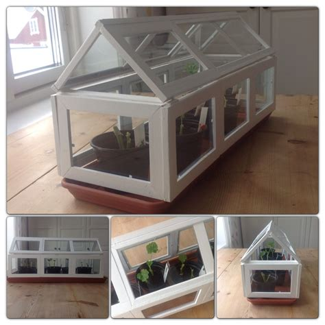 DIY Mini Greenhouse Picture Frames