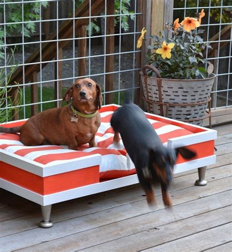 DIY Outdoor Dog Bed