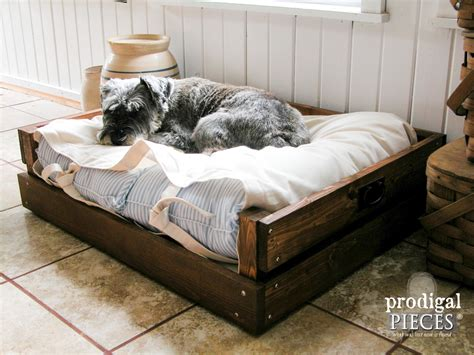 DIY Pet Bed Plans