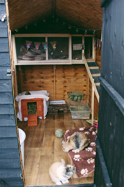 DIY Shed For Lots Of Rabbits
