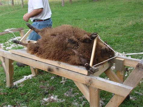 DIY Sheep Shearing Table