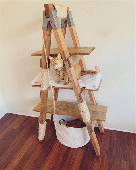 DIY Step Ladder Cat Tree