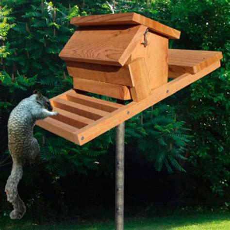 DIY Wood Bird Feeder Squirrel Proof