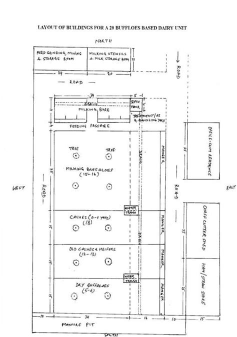 Dairy Farm Layout Plans India