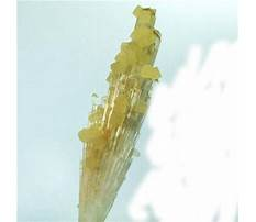 Best Dart board cabinet woodworking plans.aspx