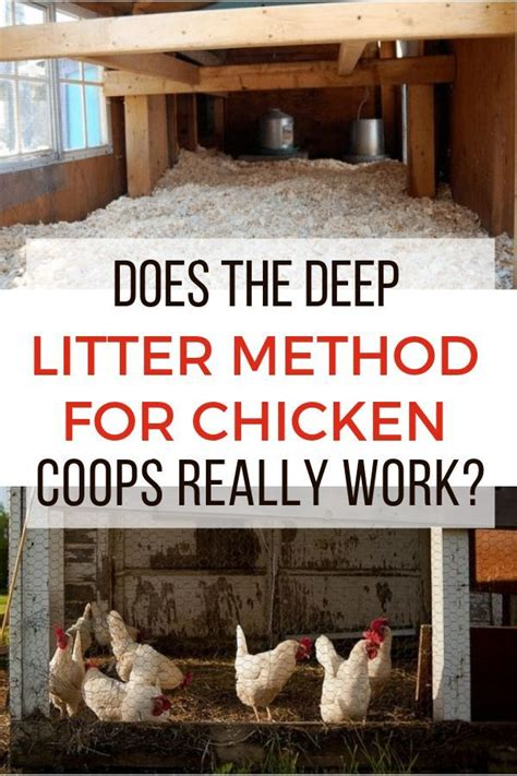 Deep Litter Method Chicken Coop Designs Diy