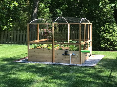 Deer Proof Raised Bed Garden Diy Pebbles