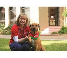 Best Delta society dog training.aspx